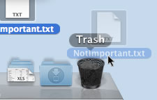 Mac OS X file being deleting in the trash can